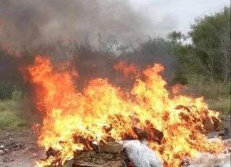 Autoridades destruyen más de dos toneladas de droga en Tamaulipas