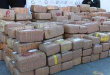 Más de 4 toneladas de mariguana se decomisaron en Nuevo León