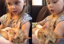 La pequeña nena había tenido como amigo al gato desde que ella nació.