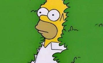 Homero manda un gif de sí mismo a Lisa, ¡y se viraliza!