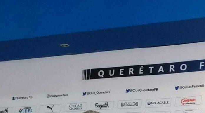 Vucetich ha sido recontratado por los Gallos Blancos, que no suman ni un punto en Liga MX