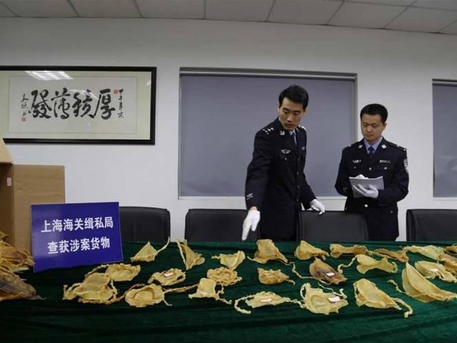 Detienen en China a embarazada con 122 buches de totoaba; viajó desde Tijuana