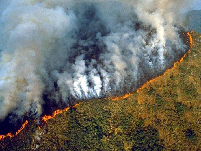 Se avecina una 'cascada de crisis' ambiental: científicos - De ...