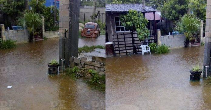 Se desborda la ciénega en Progreso; pobladores comienzan a salir de la zona  (videos) - De Peso Yucatán
